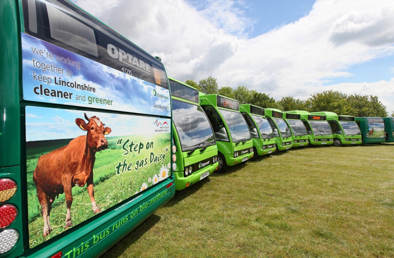 These buses were converted to run on biomethane as well as diesel. The signage on the back of each bus extols the ecological benefits of using biomethane as a green fuel